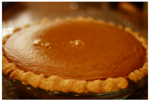 Nicole Stern Thanksgiving Pumpkin Pie
